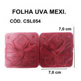 FOLHA UVA / PARREIRA MEXICANA