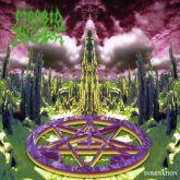 CD Morbid Angel – Domination