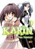 Karin - Vol. 9