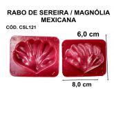 RABO DE SEREIA / MAGNÓLIA MEXIVANA
