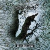 Borknagar ‎– The Olden Domain - CD