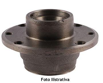 Cubo da Roda Dianteira Laika (usado) Ref.0259