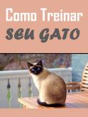 Como Treinar seu Gato