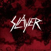 CD SLAYER - Word Painted Blood