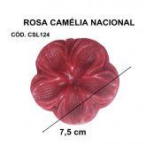 ROSA CAMÉLIA NACIONAL PEQUENA