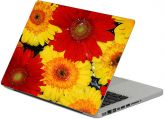 Adesivos notebook floral - Rf 509