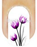 Película Tulipa 05