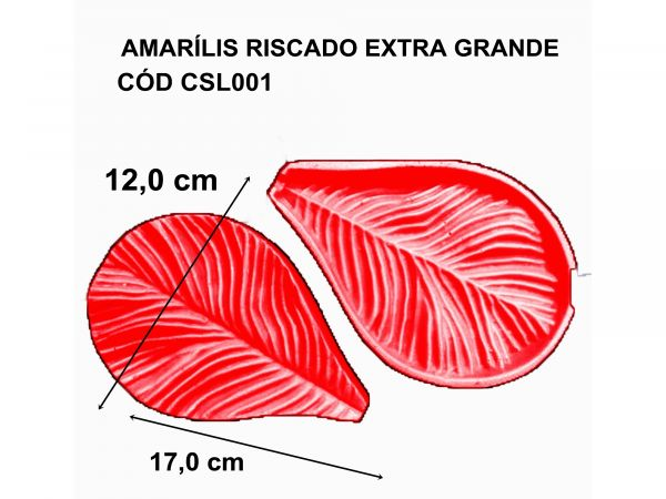 AMARÍLIS RISCADO EXTRA GRANDE