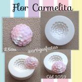 Flor Carmelita