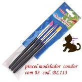 Conjunto Pincel Modelador Condor com 3