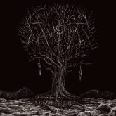 Thyrfing – Farsotstider (CD)