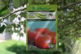 *Tomate Crioulo Amália- Envelopes 1gr