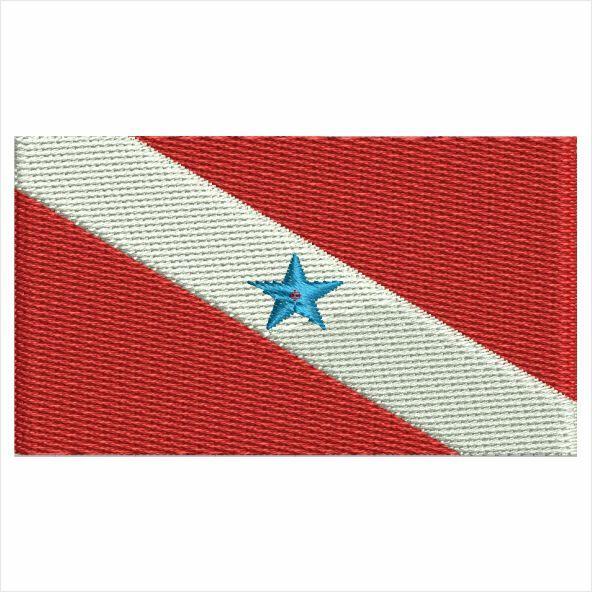 Bandeira do Pará Matriz para Bordar