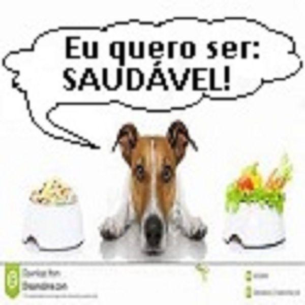 ALIMENTAÇÃO NATURAL E CASEIRA PARA SEU CACHORRO