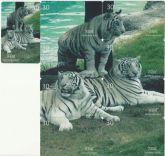 Serie tigre branco II Pulzzle