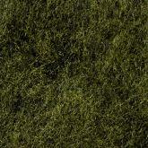 SPARKLE DUB (Dark Olive)