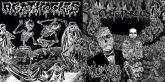 CD - Certo Porcos! / Agathocles (Split)