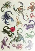 Kit 60 Tatuagens Escorpiões