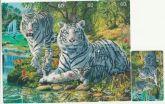 Serie tigre branco Pulzzle