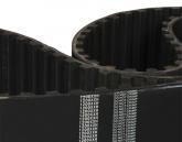 Correia  XXH 800 500  Largura  127,0mm  (800 XXH)  Sincronizadora Optibelt