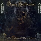 Dying Suffocation (Brasil) - In The Darkness of The Lost Forest