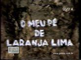 DVD Novela Meu Pé De Laranja Lima 1980 - Frete Grátis
