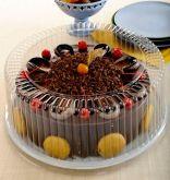 G 60MA Torta Grande Alta 2,5kg 1un