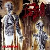 Death -Human