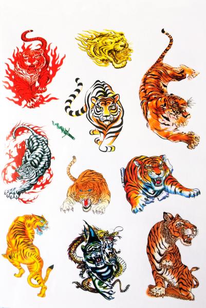 Kit 60 Tatuagens Tigre