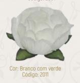 Forma para doces Decoradoces branco com verde