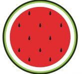 Papel Arroz Frutas Redondo 007 1un