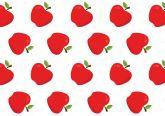 Papel Arroz Frutas A4 003 1un