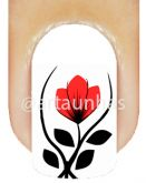 Película Tulipa 76
