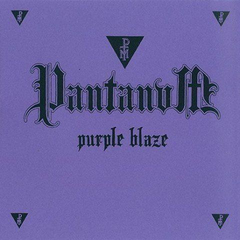 PANTANUM - Purple Blaze