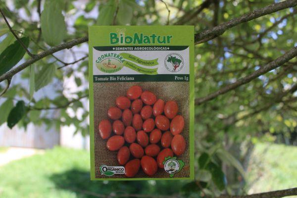 Tomate Bio Feliciana - Envelope 1 grama