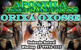 APOSTILA ASSENTAMENTO ORIXÁ OXOSSE