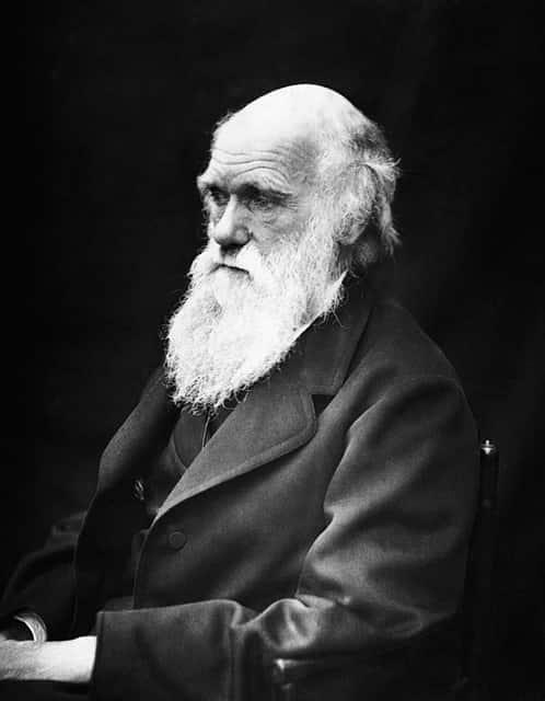 Charles Darwin, criador do evolucionismo
