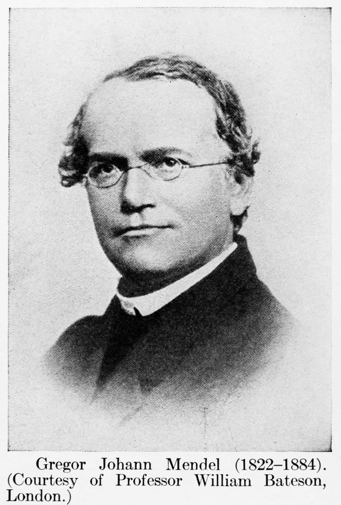 Gregor Johann Mendel, criador e fundador da genética clássica.