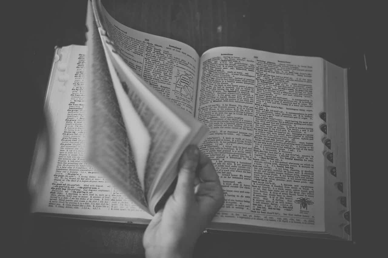 foto de um dicionário. o dicionário possui um texto expositivo