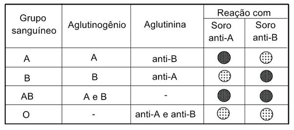Tabela com os grupos sanguíneos, presença ou não de aglutinogênio e aglutinina, além da reação com os soros Anti-A e Anti-B. Em escuro, é quando acontece a aglutinação, e em branco, quando não ocorre.