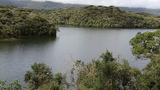 Mata Atlântica, exemplo de vegetação típica do Clima Tropical.