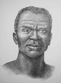 Retrato de Zumbi dos Palmares.