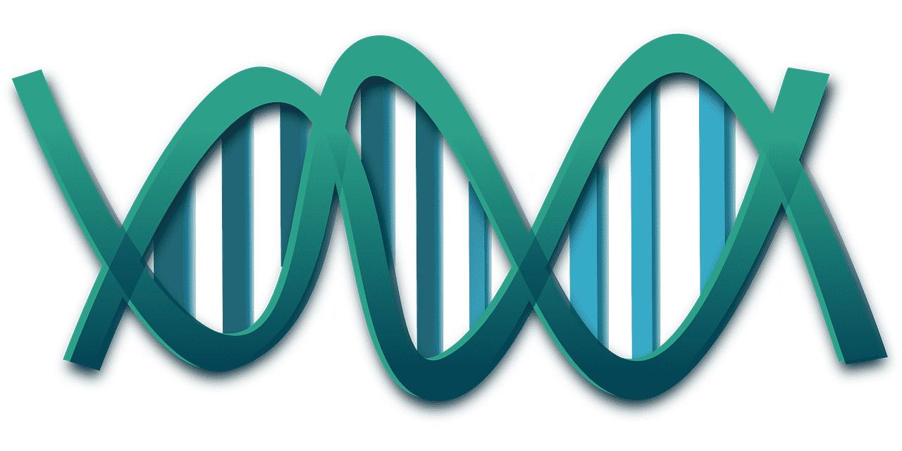 RNA - Ácido Ribonucleico
