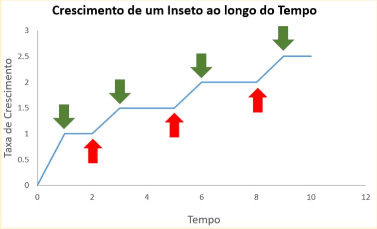 Gráfico do crescimento de um inseto, onde as setas vermelhas mostram os eventos de muda e as setas verdes mostram o momento de endurecimento do exoesqueleto de quitina e, consequentemente, o crescimento do inseto mantendo-se constante até a próxima muda.