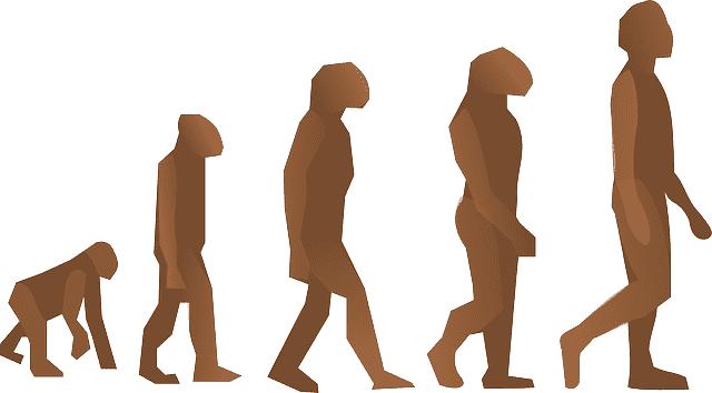 Darwinismo e Lamarckismo