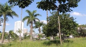 Zona leste de São Paulo