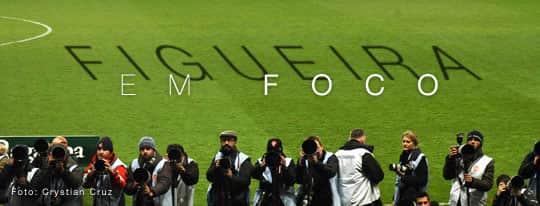 fotos do figueirense futebol clube meu figueira em foco
