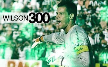 wilson 300