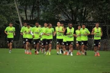 grupo jogadores elenco figueirense