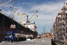 Açucar IC 45 e VHP para exportação